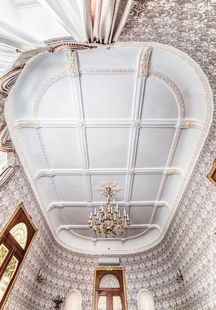 Овальний зал на першому поверсі, стеля