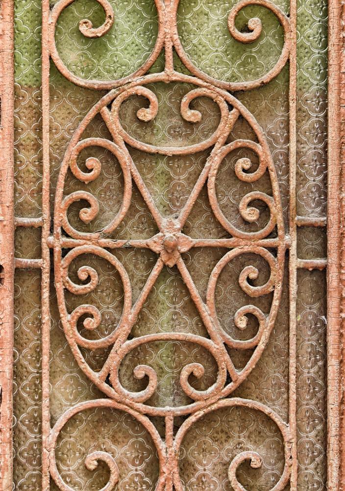 Дверь входа в лицевое крыло (левосторонний объем), решетка одной из створок, деталь