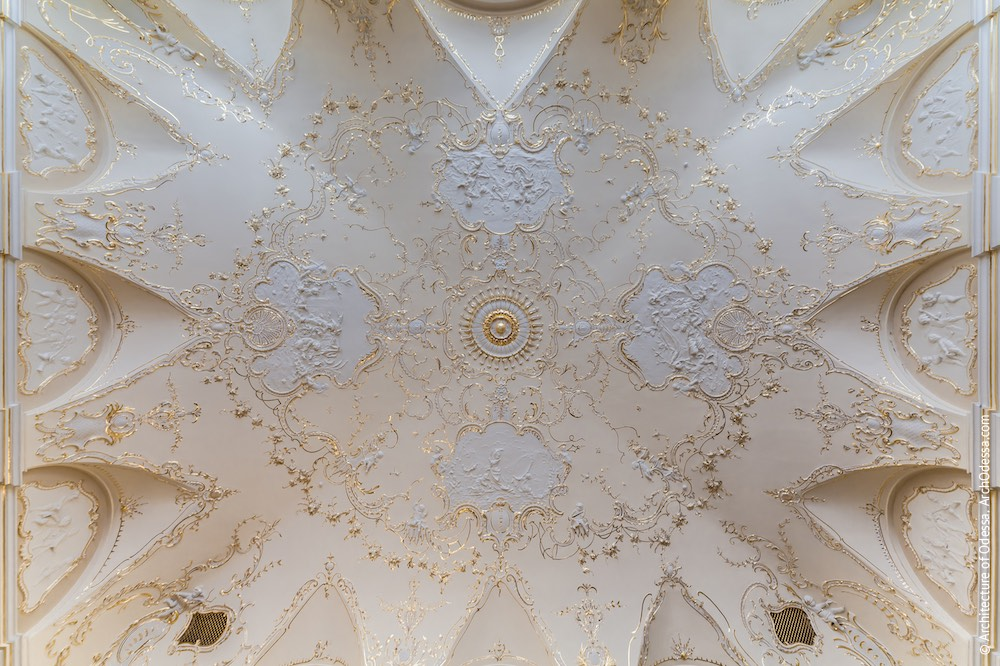 Общий вид потолка