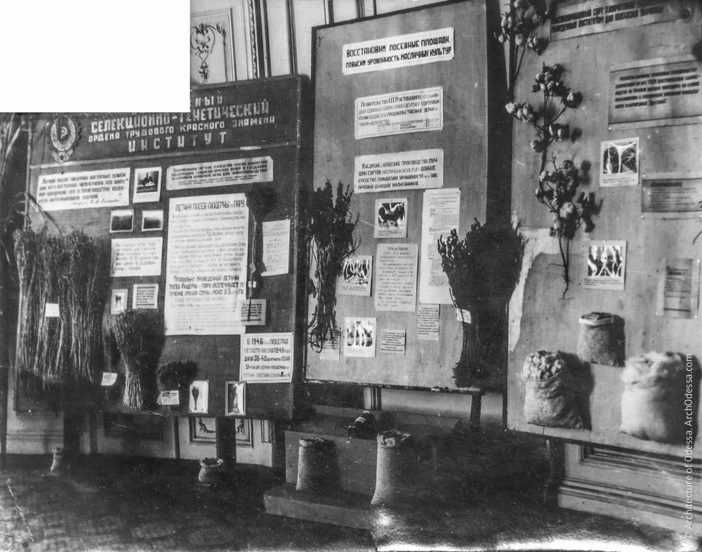 Выставка экспонатов Всесоюзного селекционно-генетического института